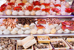 Sea Grant Report on Barriers to Shellfish Aquaculture in the U.S.