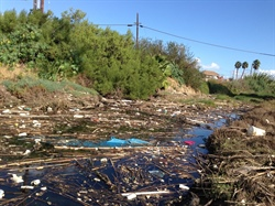 California Sea Grant publishes new research on microplastics in San Diego estuary fish