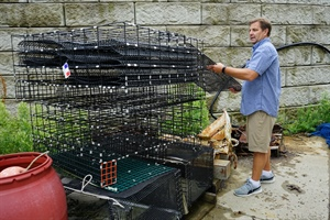 Oyster cage demonstration