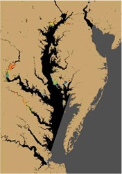 Tracking Harmful Algal Blooms Using Satellites