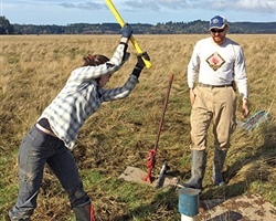 Oregon Sea Grant-funded Coastal Resilience Work Uncovers Rates of Sediment Supply and Blue Carbon Burial in Tidal Wetlands