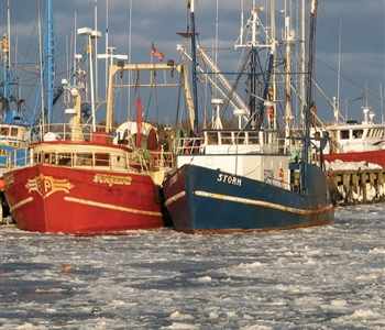 MIT Sea Grant Helps Managers Consider Social Impact of Fishing Regulations